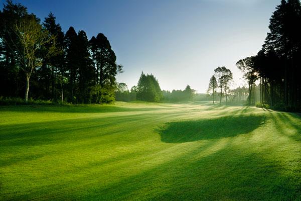 週刊パーゴルフで千葉バーディクラブが全国ベストコースランキングで上位を獲得。1